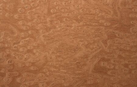 texture of the treated wooden board for furniture by macro Stock Photo - 3276329