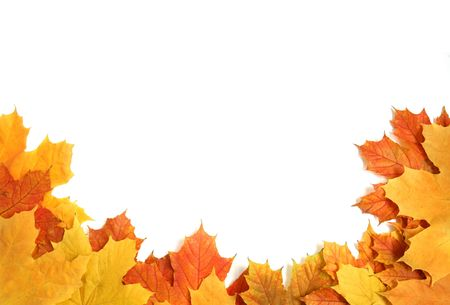 colorful frame made from an autumn leafs Stock Photo - 5681577