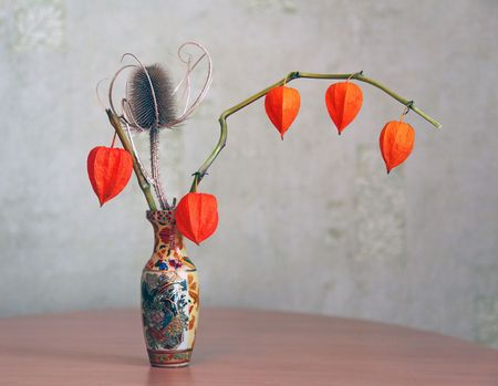 ikebana: Composition from a dry thistle and a branch of fruits physalis