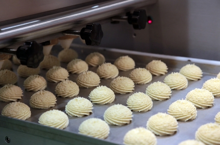 Production cookie in factory on the automatic transfer technological line photo