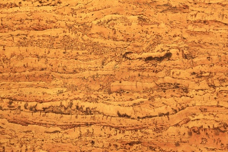 Cork Texture close up - a plate for furnish of interiors Stock Photo - 16203153