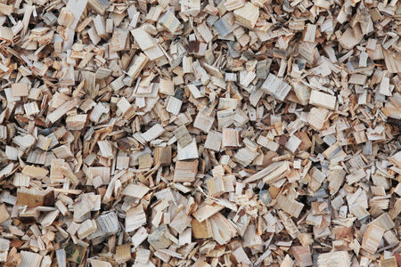 sawed: Macro of wood chips for the production of pellets