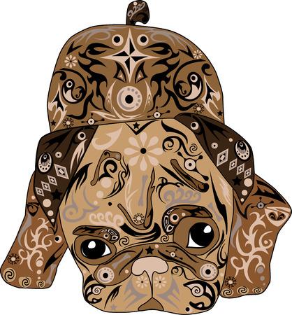 pug nose: pug dog