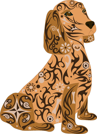 hunting cocker spaniel: Spaniel a dog, an animal a dog, an animal with drawing, the house pet, breed of a dog a dachshund, a male with a pattern, stones on a dog, a mammal a dog, the isolated spaniel, a dog a vector