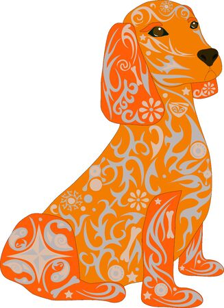 house pet: Spaniel a dog, an animal a dog, an animal with drawing, the house pet, breed of a dog a dachshund, a male with a pattern, stones on a dog, a mammal a dog, the isolated spaniel, a dog a vector