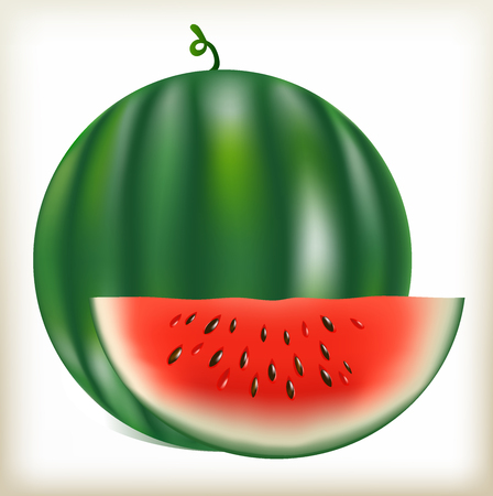 pulp: water-melon of a green, segment of a water-melon it is cut off, an annual grassy plant, ripe juicy fruit, a fruit with watery pulp, black water-melon sunflower seeds, a bark color green with strips, pulp of a red, large berry, useful fruit from