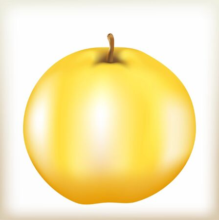 apple of yellow color, mature juicy fruit, apple-tree fruit with a fruit stem, a natural food from a tree, tasty and healthy food, a quince the isolated fruit, Illustration