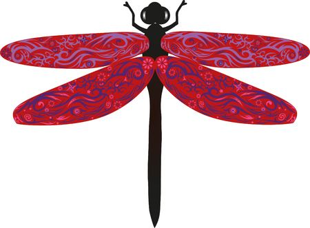 flower fields: Dragonfly with wings, an animal with drawing, an insect from fields, wildlife, an animal with a pattern, a flower on a dragonfly, Illustration