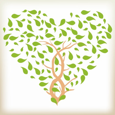 love tree: The brown tree with leaves, leaves of green color, foliage in the form of heart, an interlacing of trunks at a tree, foliage to be turned from a wind, a symbol of the nature and love