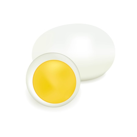 boiled egg: Boiled egg, the food of poultry farm, healthy food, fast breakfast, round oval, the isolated vector, the cut yolk, culinary dish, animal protein