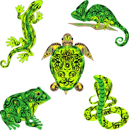 The set of a reptile, is a lot of animals, vector illustrations, a lizard with a pattern, the royal cobra is painted, a large toad, a chameleon on a branch, tropical fauna