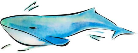 Whale watercolor illustration, sea animal, blue ocean dweller, underwater fauna Illustration