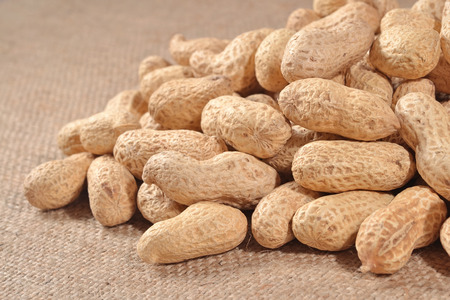 sacking: Peanuts in a sacking background