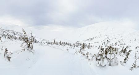 Winter mountain landscape in the Carpathians, Ukraine Imagens