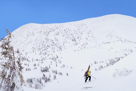 Alpine touring skier hiking in winter mountains. Carpathians, Ukraine. Stock Photo
