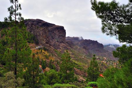 gran canaria: Gran Canaria Island