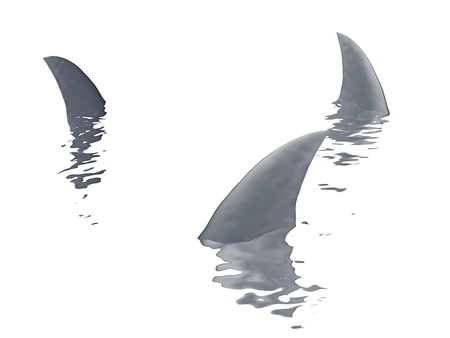 three sharks fin  on a white background Stock Photo