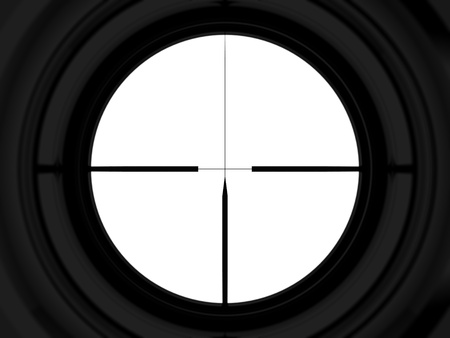 gun sight: aiming
