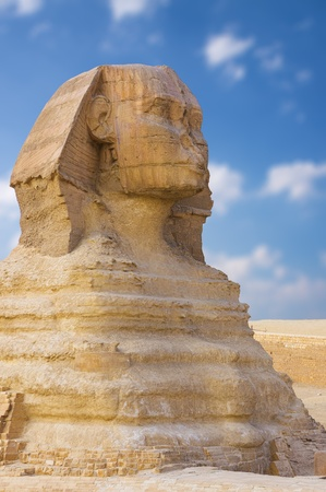 Great Sphinx. Giza, Egypt  photo