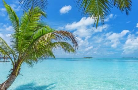 Maldives mer