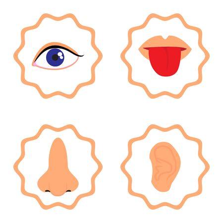 infographics human senses, taste, smell, hearing, sight