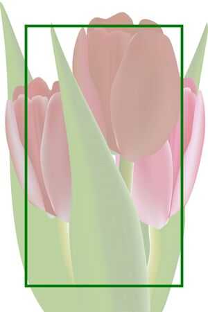february 14th: Greeting card  with tulips, made with a gradient mesh
