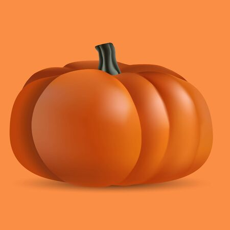 realistic 3D ripe orange pumpkin on an orange background made with a gradient mesh