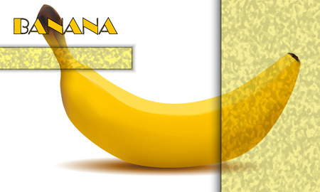 Blank infographics about the banana.Light yellow grains selection and blackout on white background.
