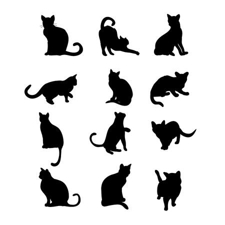 silhouette gatto: Sagome di gatti Vettoriali