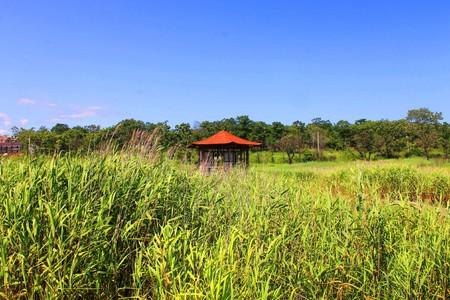 Ein Foto zeigt einen Pavillon auf dem Wasser. Standard-Bild