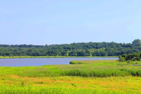 Foto, das ein Panorama der Natur, Wälder und Felder zeigt. Standard-Bild
