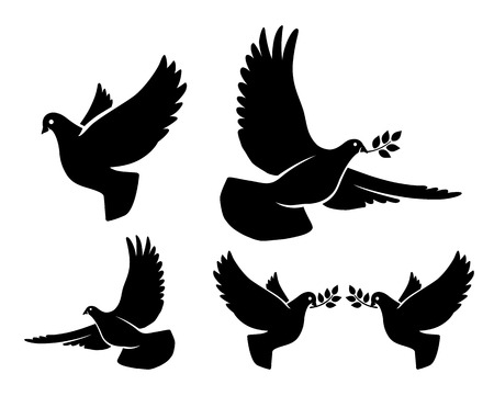 branch silhouette: Dove silhouettes. Vector flying dove with olive branch black silhouettes on white background