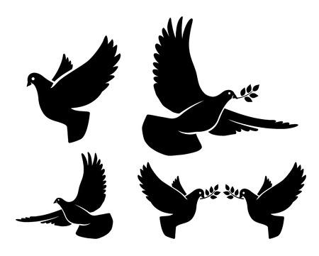 paloma: Siluetas paloma. Vector de vuelo paloma con la rama de olivo siluetas negras sobre fondo blanco