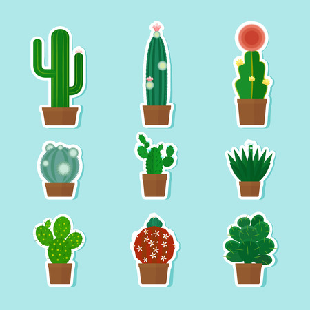 cactus cartoon: Cactus Icons Set. Stickers with cacti. Vector illustration Illustration