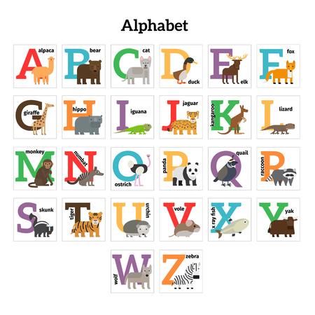 cat alphabet: English animals zoo alphabet. Preschool kids education. Vector illustration.