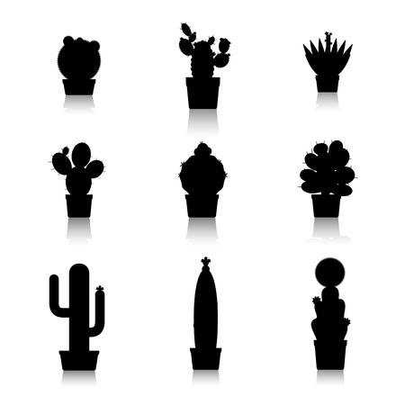Cactus silhouettes on white background. Cactus in pots, home plants. Vector icons