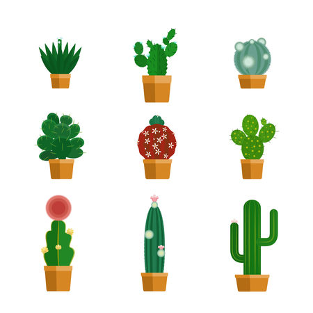 flowerpots: Cactus icons in flat style. Tropical flowers in flowerpots. Vector illustration Illustration