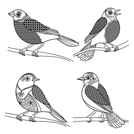 patrones de flores: p�jaros zentangle, dibujado a mano con la decoraci�n del doodle. Ornamento floral l�nea de negro en las aves cabeza en el pecho y las alas. ilustraci�n vectorial Vectores