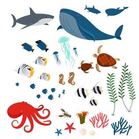 ballena azul: animales del océano, la fauna marinas y peces de mar. Iconos de la fauna del océano en el fondo blanco. ilustración vectorial Vectores