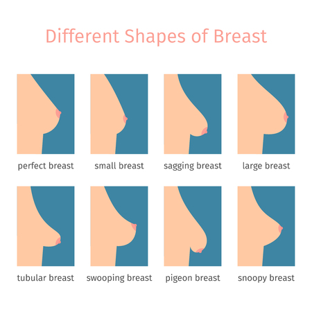 Breast shapes icons in flat style. illustration