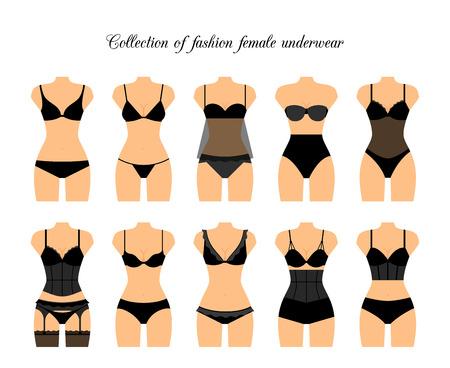 underclothing: Female lingerie or female underwear set. Vector illustration
