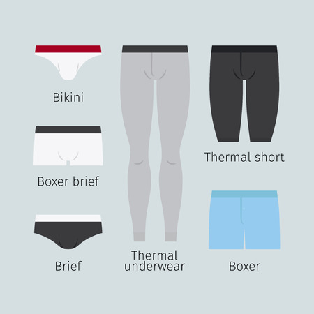 slip homme: Man sous-vêtements. Vaus sous-vêtements masculins comme boxeur et brève, bikini et sous-vêtements thermiques illustration vectorielle