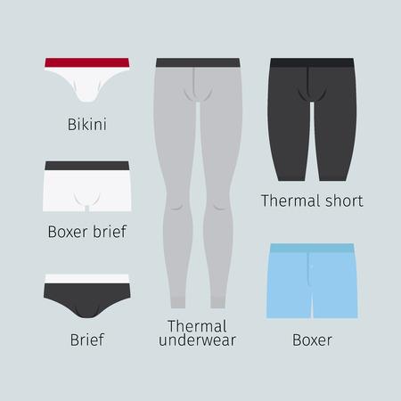 underside: Man underwear. Various men underwear like boxer and brief, bikini and thermal underwear vector illustration Illustration