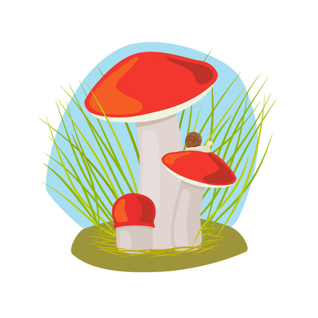 Forest mushroom with grass and snail on mushroom cap vector