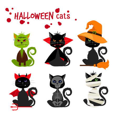 pussy cat: Halloween black cat fashion costume outfits. Dead cat skeleton and mummy pussy cat , zombie kitty and vampire cat vector illustration isolated on white