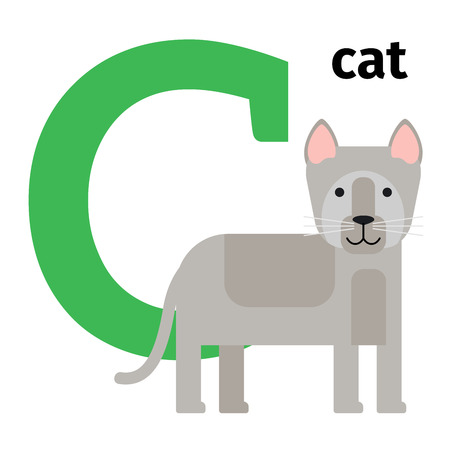 felidae: English animals zoo alphabet with letter C. Cat vector illustration