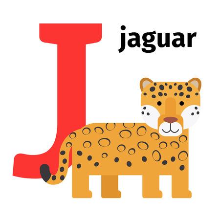English animals zoo alphabet with letter J. Jaguar vector illustration Illustration