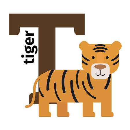 English animals zoo alphabet with letter T. Tiger vector illustration Illustration
