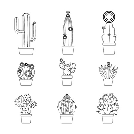 calendula flower: Cactus thin line art isolated icon set for coloring page design. Vector illustration Illustration