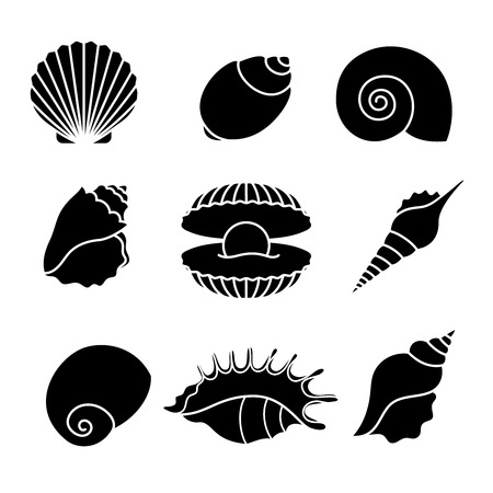 Vector sea shells and pearl seashell silhouettes isolated on white background